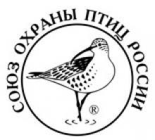 Конкурс на лучшую кормушку для птиц