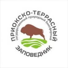 Творческий конкурс по созданию образа Лешего - защитника леса